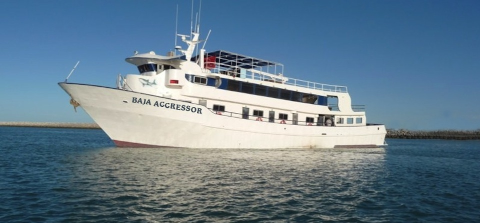 Baja Aggressor